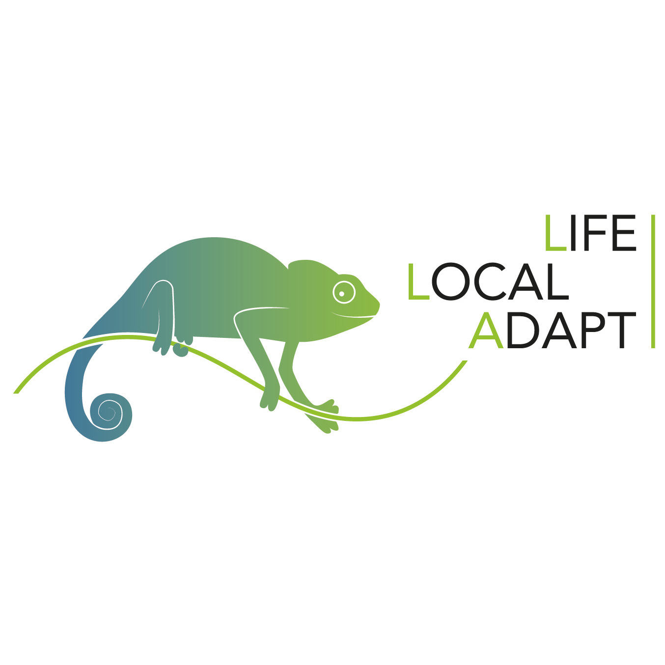LIFE LOCAL ADAPT - Integration of climate change adaptation into the work of local authorities (LIFE15 CCA/DE/000133)